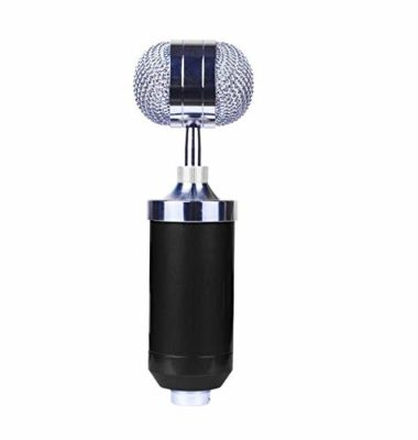 Aeoss Professional Condenser Microphone Sound Studio Recording Dynamic Microphone For Studio Studies Broadcast Recording Studios (BLACK)