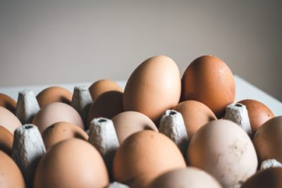 Are Egg Boilers Any Good Things You Should Know