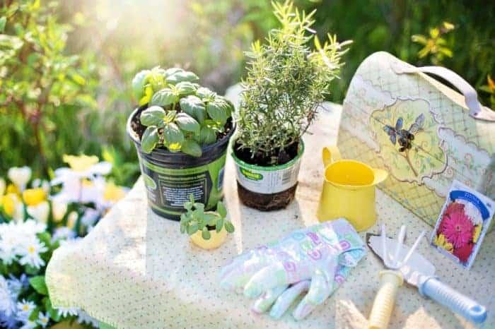 Best Garden Accessories