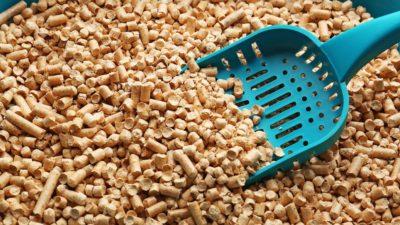 Biodegradable litter