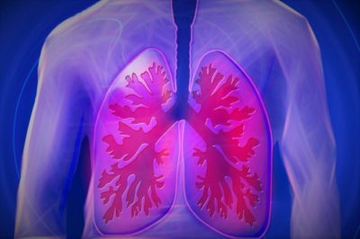 Can Human Lungs Repair Themselves 1