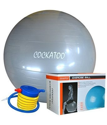 Cockatoo Anti-burst gym ball (55cm to 95cm) with foot pump, exercise ball