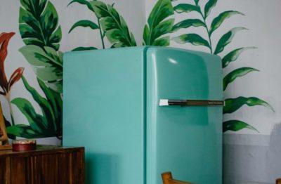 Common Refrigerator And Freezer Problems