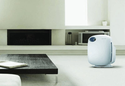 Common Types of Mold and Role of Air Purifiers in Solving Mold Problems