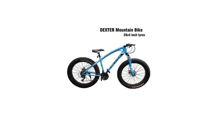 Dexter Mountain Bike Review