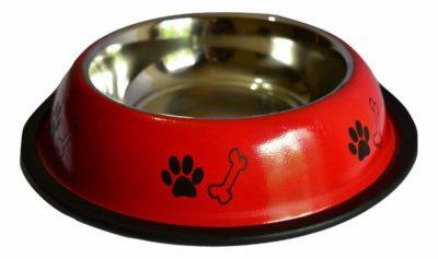 Foodie Puppies Stainless Steel Dog Food Bowl