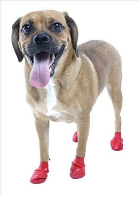 Goofy Tails Waterproof Pawz Dog Boots with Key Chain