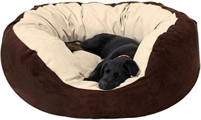 Gorgeous Soft Reversible Bed