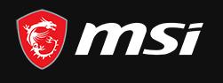 Msi Logo 2