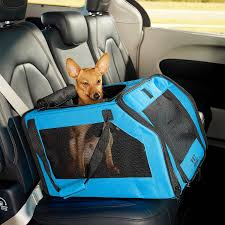 Pet car seat carrier