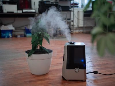 Reasons Why Patients With Lung Diseases Copd Need Good Indoor Air Quality