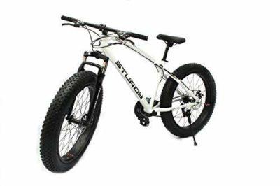STURDY BIKES Mountain Carbon Steel Fat Bike