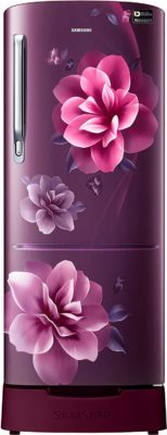 Samsung 192 L 4 Star Inverter Direct Cool Single Door Refrigerator