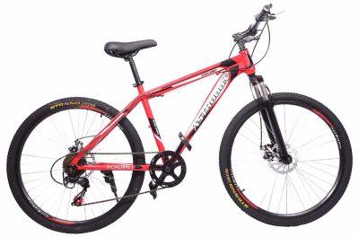 Sunbird Mountain Bike