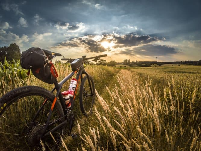Top 10 Best Mountain Bikes Available in the Market 2019