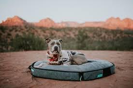 Travel Dog Bed
