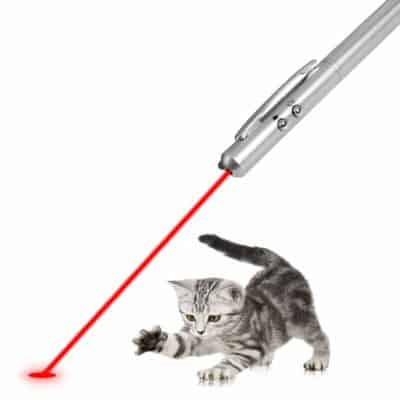 VanGoddy Laser Light Pet Cat Dog Interactive Chaser Playful Training Toy (Silver)