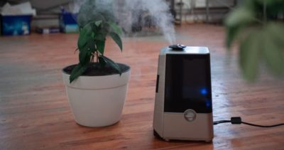 Why Invest in Air Purifiers