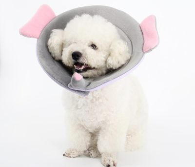 Yarssir Recovery Elizabethan Pet Dog Cat E-Collar Cone Breathable Soft Edge for Surgery