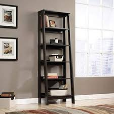 Leaning and Ladder Bookshelf