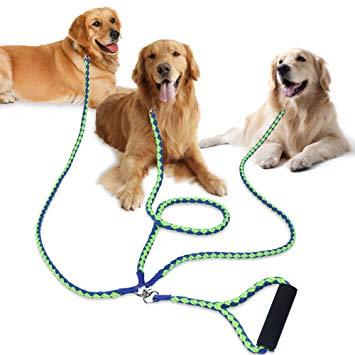multiple leash
